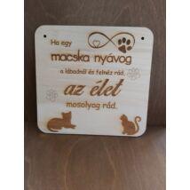 Macskás tábla 2